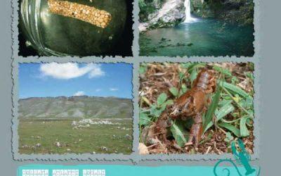 Atlante dei macroinvertebrati d'acqua dolce