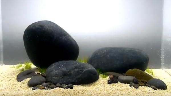 Aquascaping, allestimento con rocce